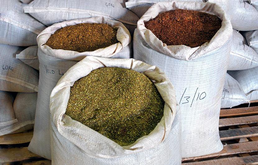 Ройбос различной степени ферментации