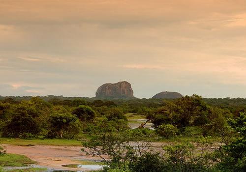 Национальный парк Яла, Рухуна, Шри-Ланка