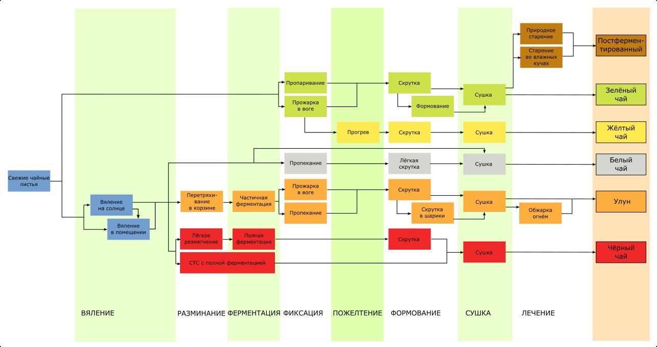 Схема производства наиболее распространенных типов чая
